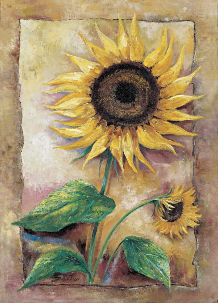 Beautiful sunflower poster print by Rian Withaar