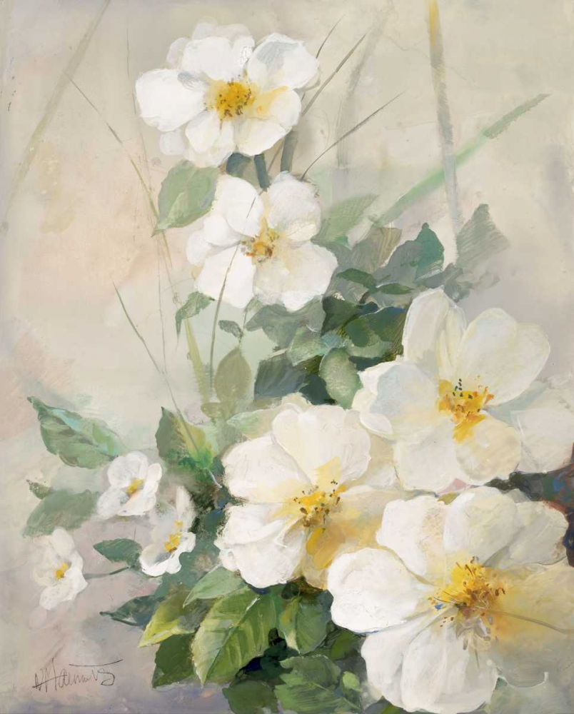 Lovely anemones poster print by Willem Haenraets