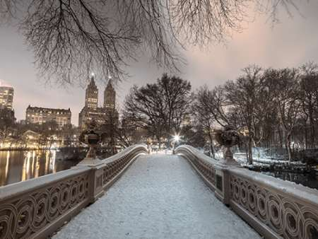 Central park Bow Bridge with Manhattan skyline, New York poster print by Assaf Frank