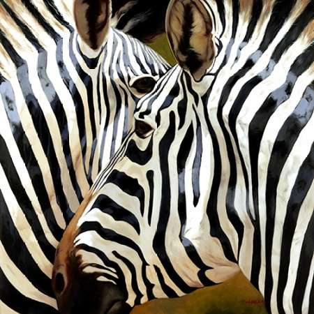 Zebra Close-up poster print by  Arcobaleno
