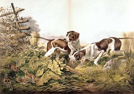 American Field Sports. On a Point. poster print by  Currier and Ives