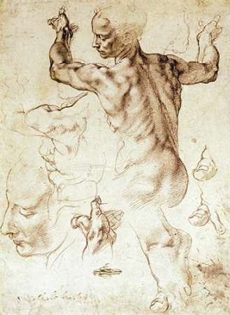 Anatomy Sketches - Libyan Sibyl poster print by  Michelangelo