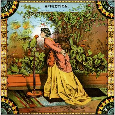 Affection poster print by  Unknown