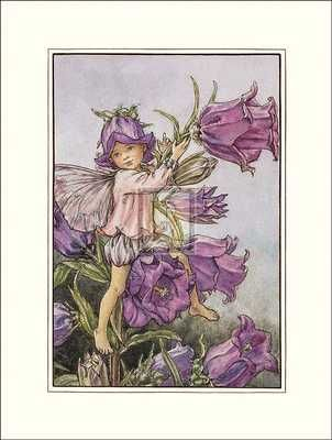 Canterbury Bell Fairy poster print by Cicely Mary Barker
