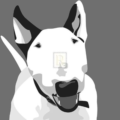 Bull Terrier poster print by Emily Burrowes
