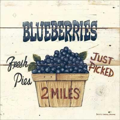 Blueberries Just Picked-6X6 poster print by David Carter Brown