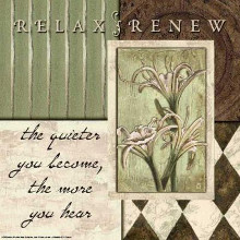 Sage and Harlequin...Relax Renew poster print by Debbie Dewitt