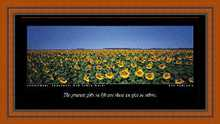 Sunflowers, Gunnedah NSW poster print by Ken Duncan