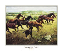 Mares Foals poster print by John Leone