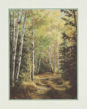 Woodland Path poster print by Pat Durgin