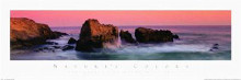 Nature's Colors-Big Sur poster print by Wayne Williams