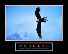 Courage - Bald Eagle poster print by  Unknown