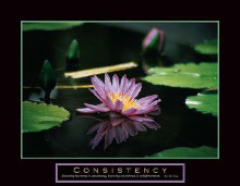Consistency - Pond Flower poster print by Jerry Angelica