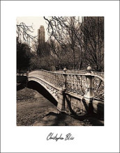 Central Park Bridges II poster print by Chris Bliss