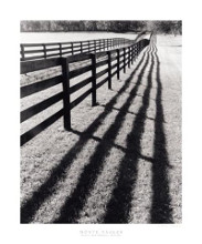 Fences And Shadows, Florida poster print by Monte Nagler