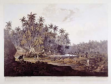View Near Point De Galle, Ceylon poster print by Henry Salt
