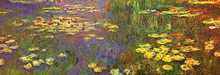 Nympheas Water Plantes poster print by Claude Monet