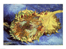 Sunflowers, 1887 poster print by Vincent van Gogh