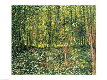 Trees and Undergrowth, 1887 poster print by Vincent van Gogh