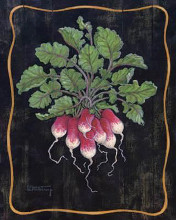 Bouquet Of Radishes L poster print by Janet Kruskamp