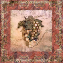 Tuscany Grapes poster print by Alma Lee