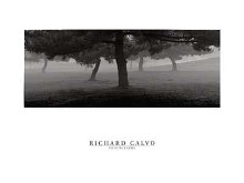 Trees In The Fog poster print by Richard Calvo