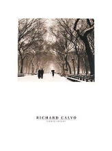 Central Park poster print