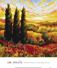 Tuscany In Bloom IV poster print by Jm Steele
