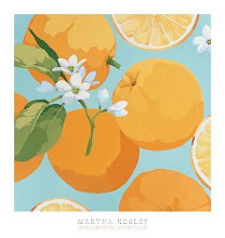 Fresh Oranges poster print by Martha Negley