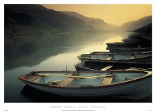 Hazy Landing poster print by Peter Adams