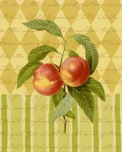 Botanical Peaches poster print by  Studio Voltaire