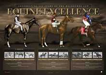 Equine Excellence poster print by  Unknown