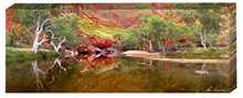 Ormiston Gorge NT poster print by Ken Duncan
