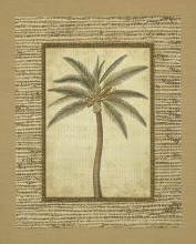Date Palm poster print by Victoria Hassy
