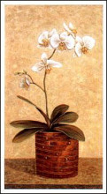 Orchid In Wicker Basket II poster print by John Park