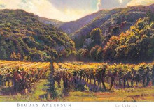 Le Luberon poster print by  Anderson