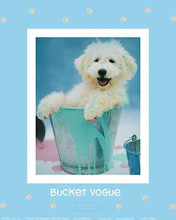 Bucket Vogue poster print by Rachael Hale