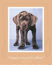 I Need a Second Coffee poster print by Rachael Hale