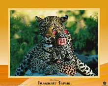 Imaginary Safari - Leopard poster print by Tom Arma