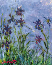 Iris poster print by Claude Monet