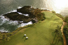 Golf Course, Hawaii Coast poster print by  Unknown