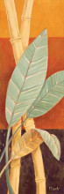 Bali Leaves I poster print by Paul Brent
