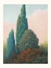 Tuscan Trees I poster print by Allan Stephenson