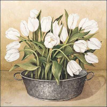 White Tulips poster print by Joyce Galley