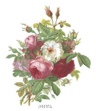 Antique Roses poster print