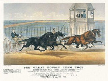 Great Double Team Trot poster print