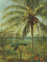 Palm Tree, Nassau poster print by Albert Bierstadt