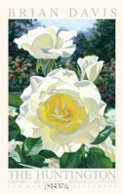 Huntington Rose Garden poster print by Brian Davis