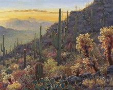 Sonoran Sunset poster print by Gretchen Warren