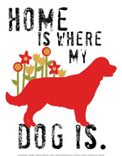 Home Is Where My Dog Is poster print